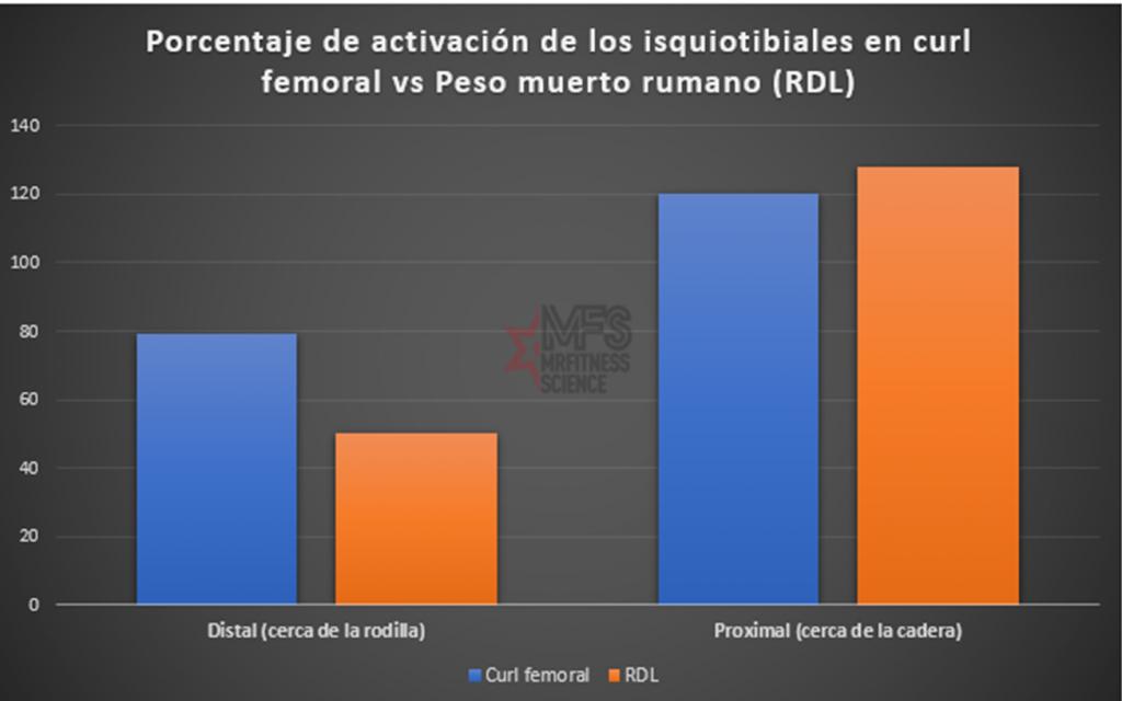 Porcentaje de activación de los isquiotibiales en curl femoral vs RDL
