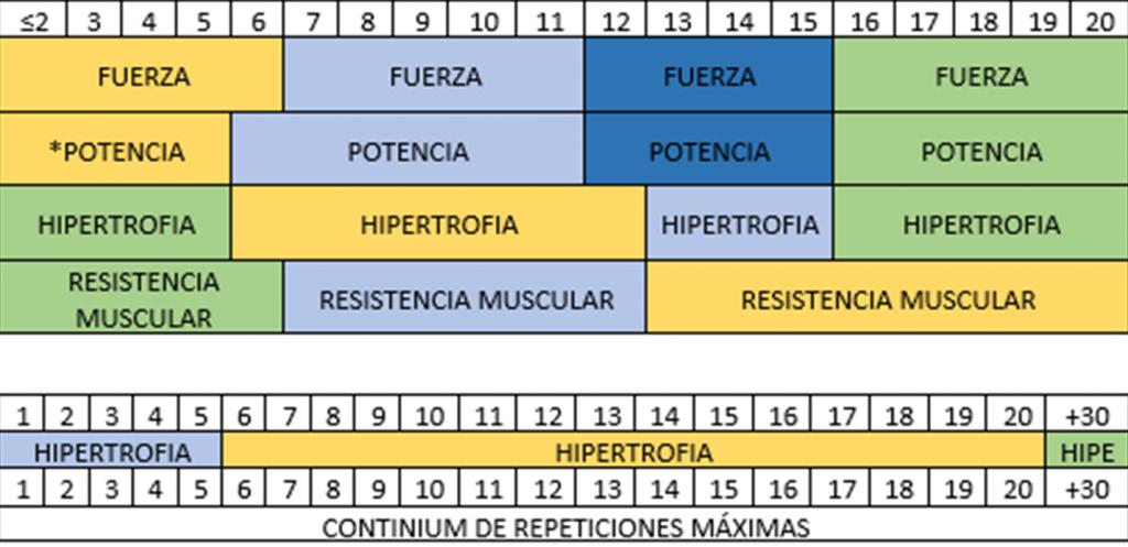 Continium de repeticiones. Rango de repeticiones de hipertrofia.