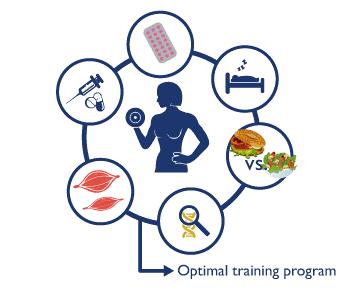 Factores que influyen en un entrenamiento óptimo. Genética, nutrición, descanso, suplementanción, estrés, edad, etc.