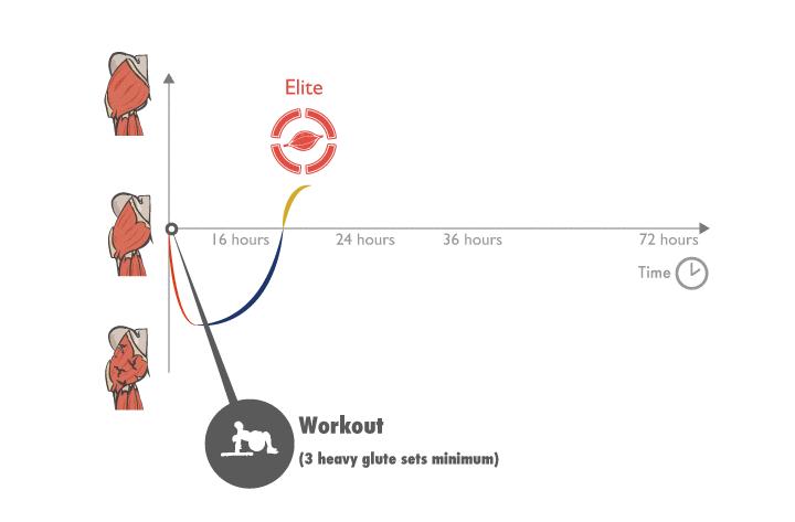 Tiempo de recuperación necesario en función de si eres principiante, intermedio, avanzado o élite en el entrenamiento con cargas.
