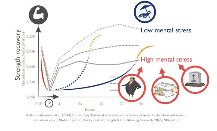 Mayores niveles de estrés mental empeoran nuestra capacidad de recuperación y viceversa. Esto determina la frecuencia con la que podemos volver a trabajar un determinado grupo muscular.