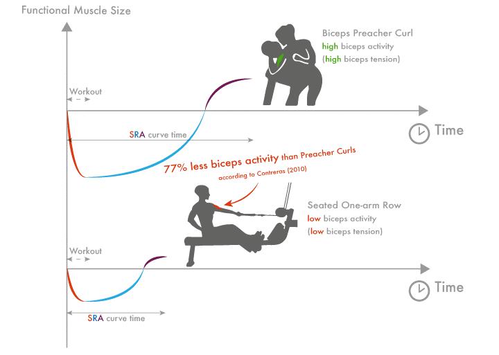 Nivel de activación muscular y capacidad de recuperación, adaptación de un grupo muscular.