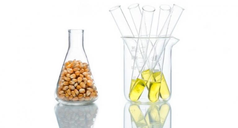 ¿El jarabe de maíz de alta fructosa es perjudicial para tu salud? ¿Es peor que el azúcar o sacarosa?