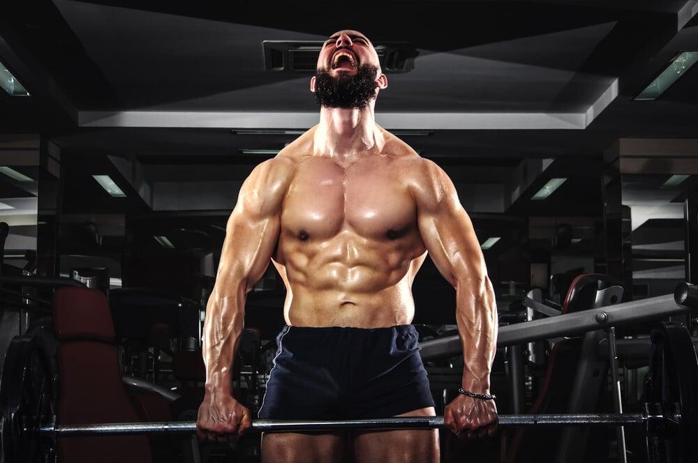 Estímulo, entrenamiento y fallo muscular